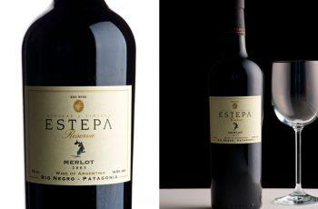 Vinho Merlot