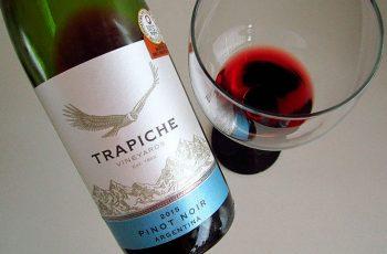 Vinho Pinot Noir Trapiche