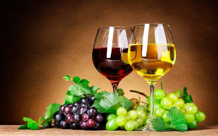 Tipos de uvas para vinhos