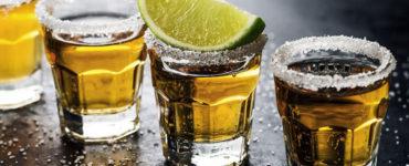 Diferença entre tequila e mezcal